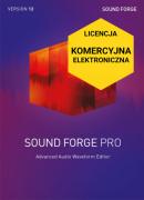 Sound Forge Pro 12 (licencja elektroniczna, komercyjna)