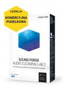 Sound Forge Audio Cleaning Lab 2 (pudełkowa, komercyjna)