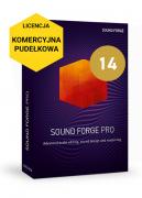 Sound Forge Pro 14 (licencja pudełkowa, komercyjna)