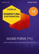 Sound Forge Pro 13 (licencja elektroniczna, komercyjna)