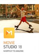 Movie Studio 18